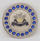 10th ROYAL HUSSARS BROACH / BROOCH (SBS)
